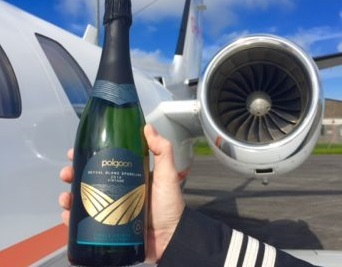 Polgoon Takes Off with The Little Jet Company