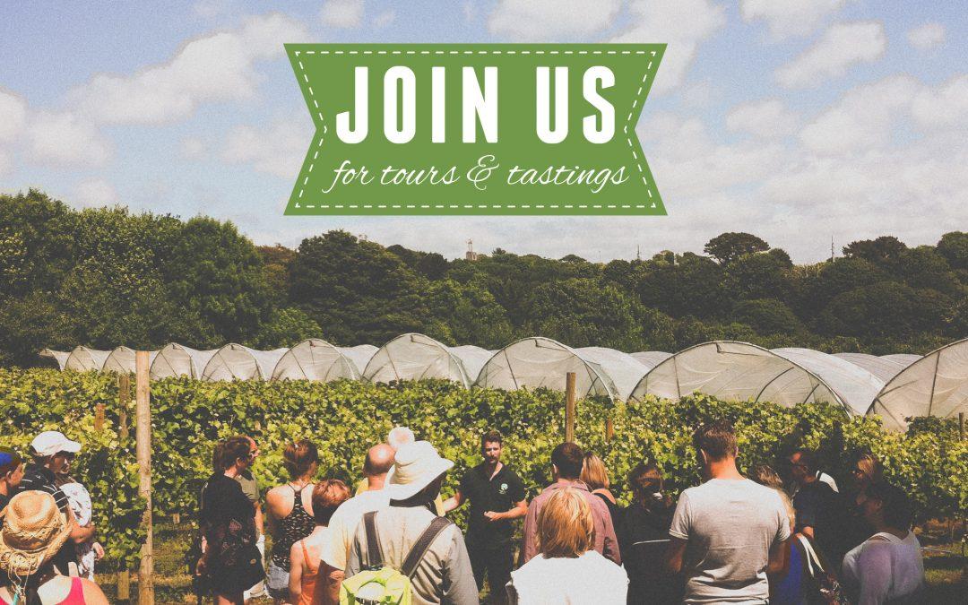 Vineyard Tours & Tastings are starting!
