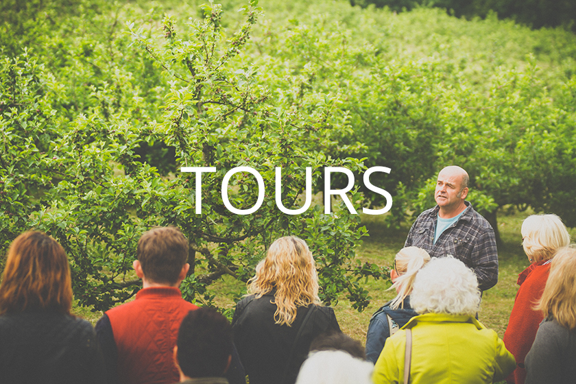 Tours and Tastings at Polgoon